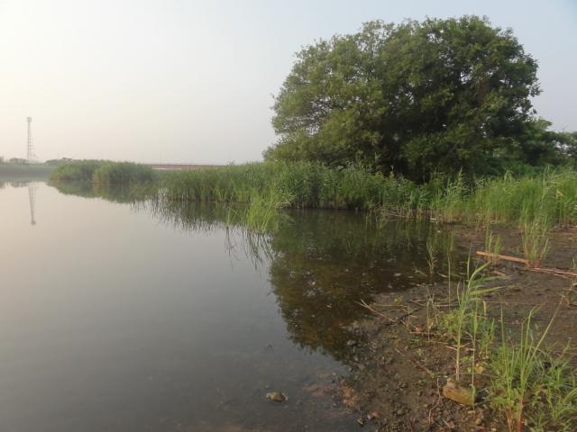 朝の小貝川