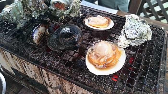 番屋の白蛤(ホンビノス)