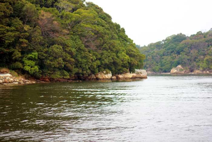 浜名湖からの景色