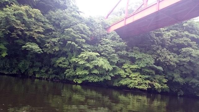 橋下(亀山湖)