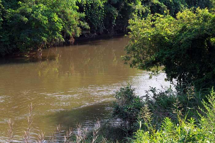 中川の流れ込み