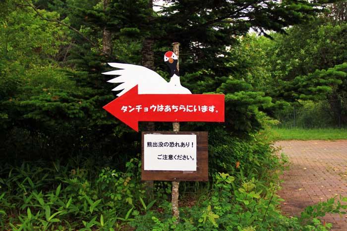 丹頂自然公園内でいきなりの告知