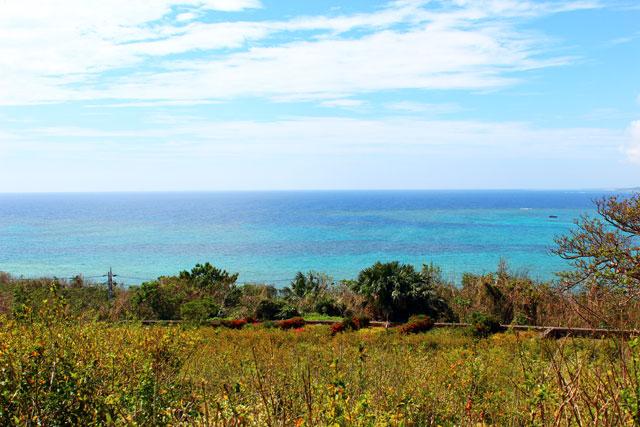 サンゴ礁の綺麗な海